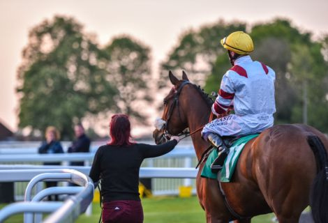 Jockey Groom Sunset